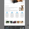 Veterinary Website Design for Compassionate Care Animal Clinic